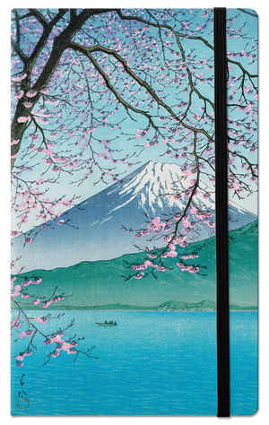 Mount fuji in the spring