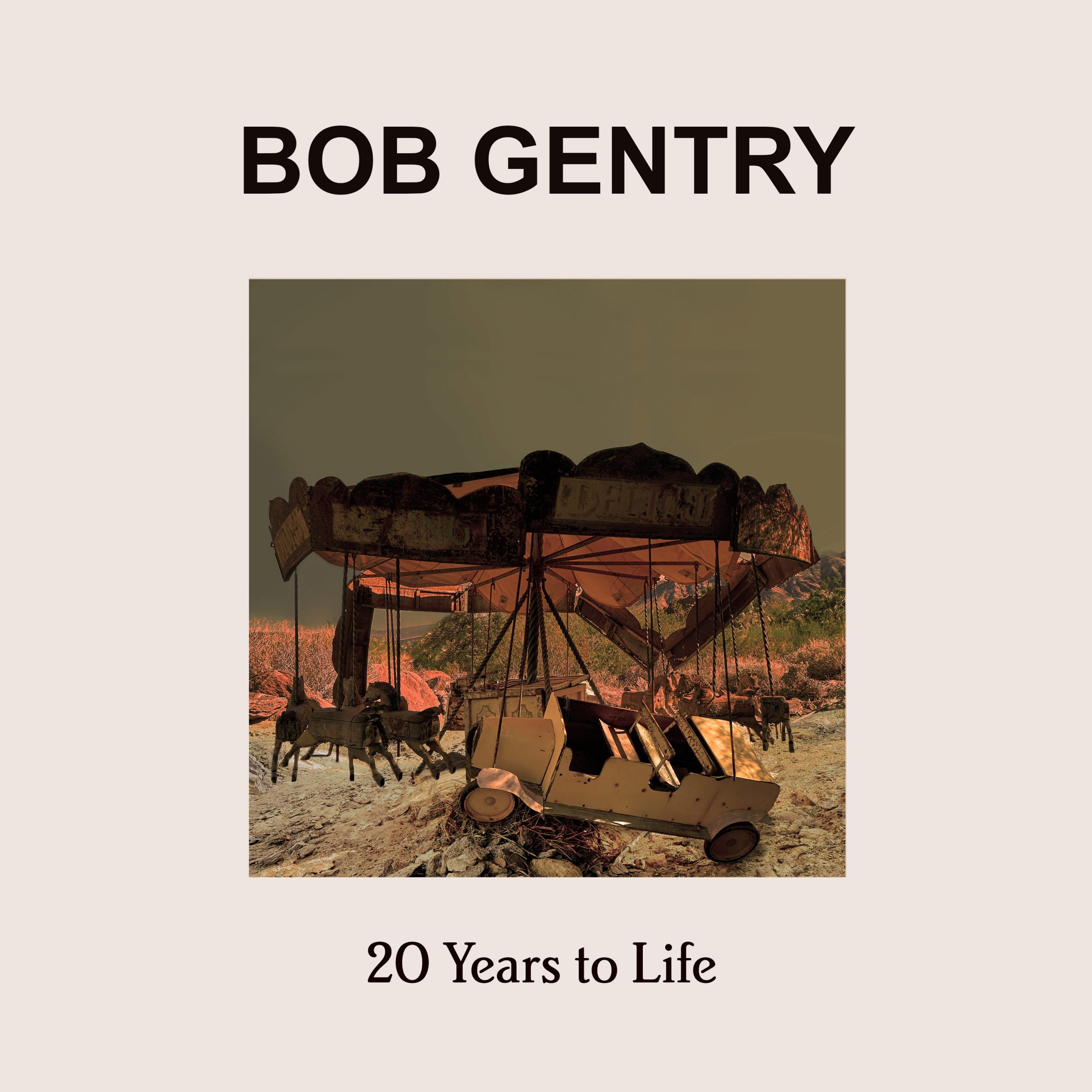 20 Years to Life
