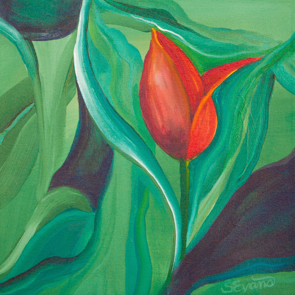 Red Tulip painting Sally Evans