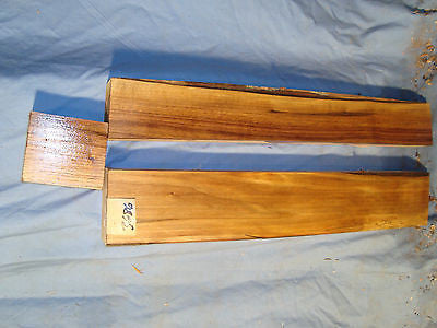 #3686 (3) Thick Black Walnut Boards