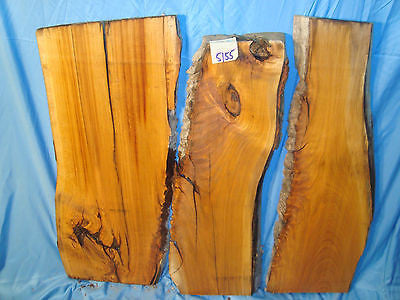 #5155  3, Live Edge wild black Cherry Slabs  rustic