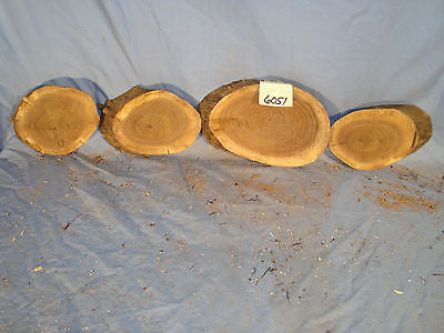 # 6051 4, spalted black walnut log slices rustic shelf slab band saw cut