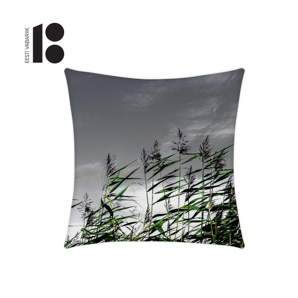 Pillowcase, Coastland EV100