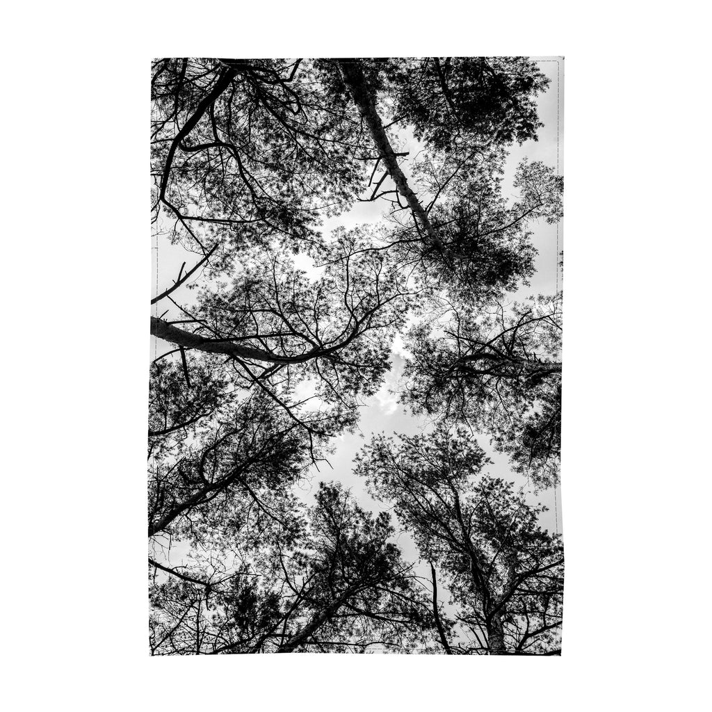 122. Table Cloth, Treetops