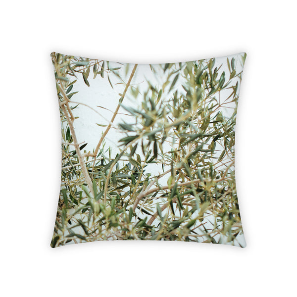 Pillowcase, Rosmarinium