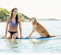Woman and dog sitting on a surfboard.