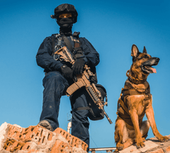 Military dog with a soldier