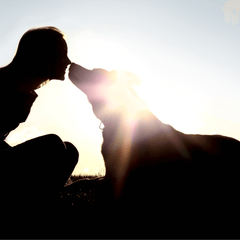 Woman and dog touching noses