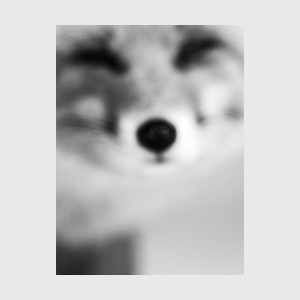 Load image into Gallery viewer, Kitsune