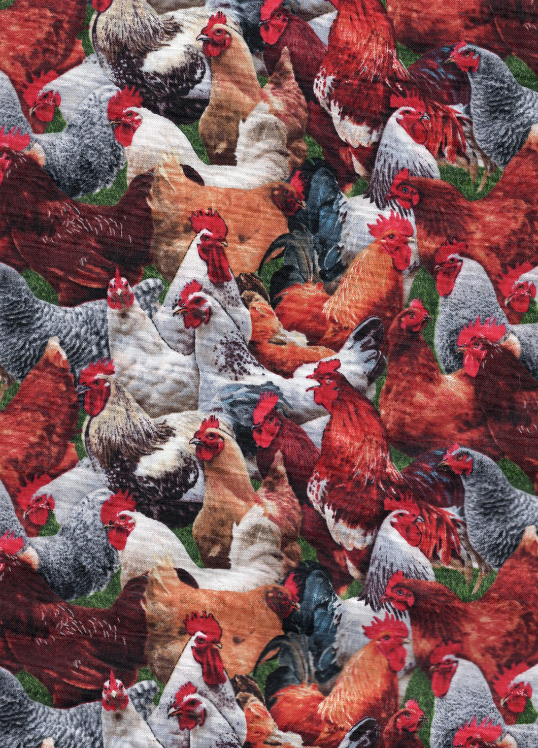 Farm Animals Roosters / Multi cr827