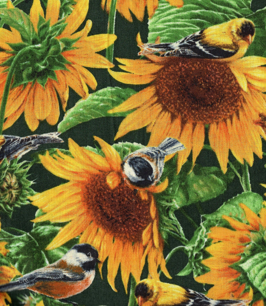 Sunflowers And Birds flo381