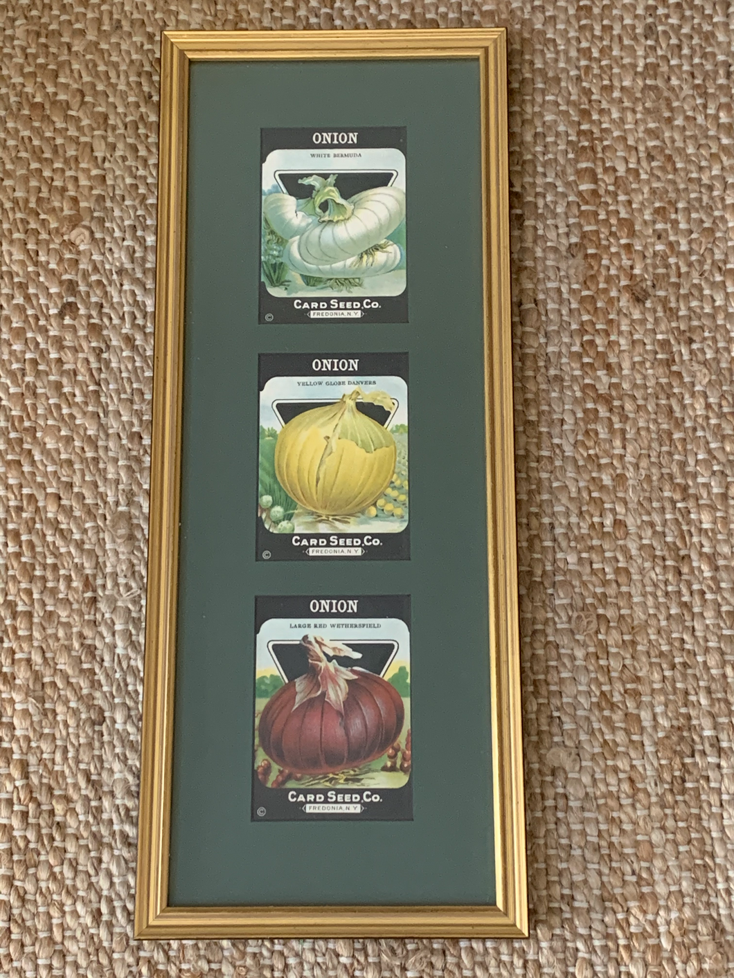 Vintage Framed Seed Packets