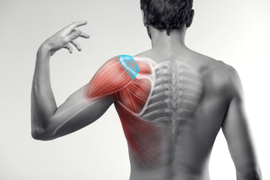 Mind Your Rotator Cuff