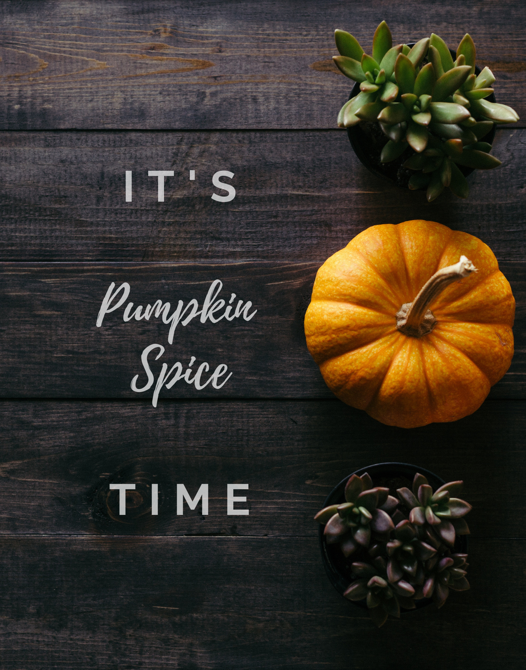 PUMPKIN SPICE TIME