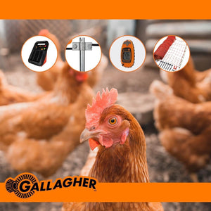 HOENDER | CHICKEN 50 Meter Fence Bundle Kit