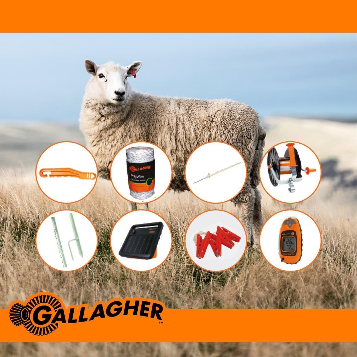 SKAAP | SHEEP 500 Meter Fence Bundle Kit