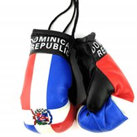 Dominican Rep. Flag Mini Boxing Gloves