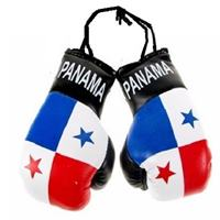 Panama Flag Mini Boxing Gloves