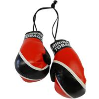 Trinidad & Tobago Flag Mini Boxing Gloves