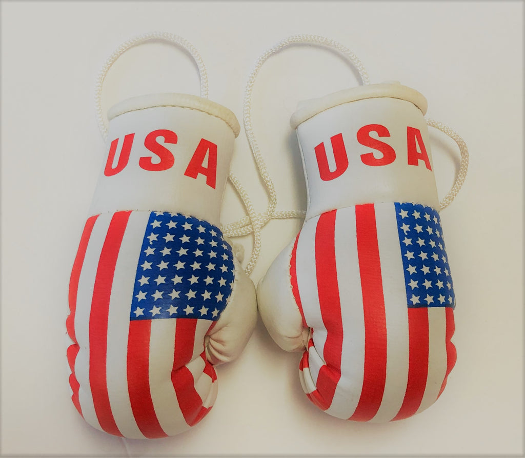 United States Flag Mini Boxing Gloves