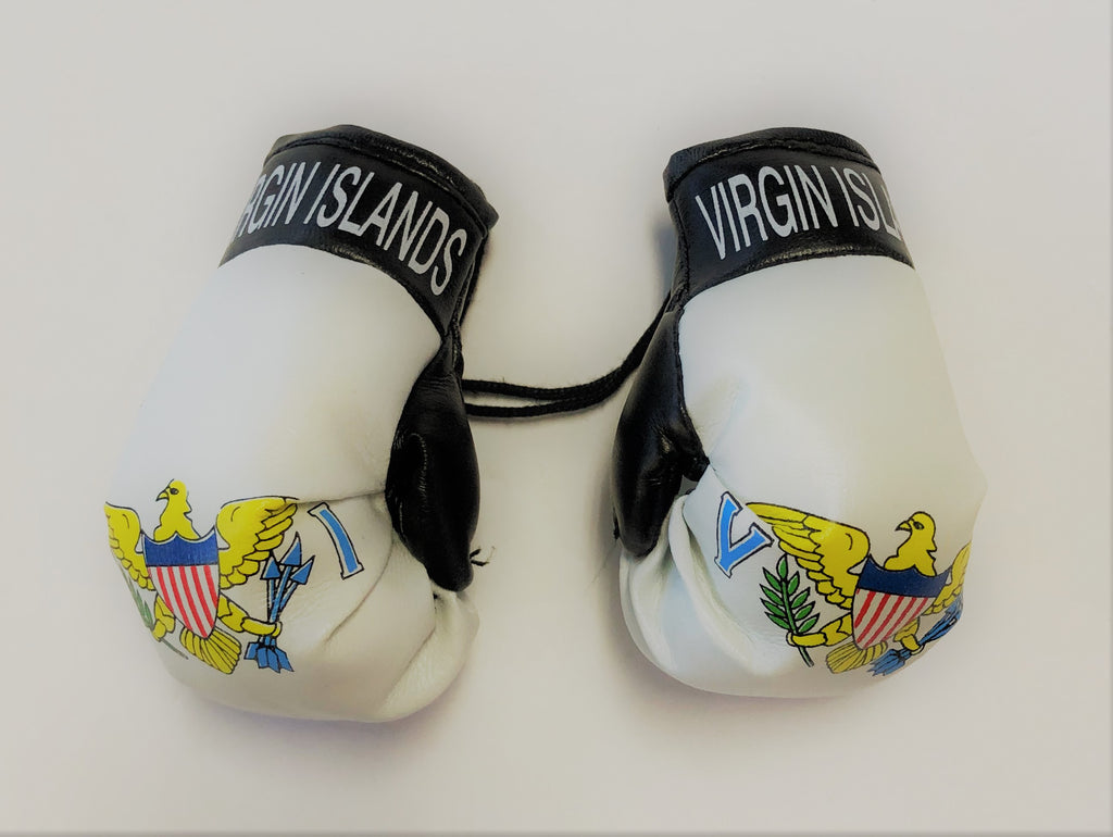 US Virgin Islands Flag Mini Boxing Gloves