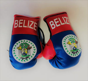 Belize Flag Mini Boxing Gloves
