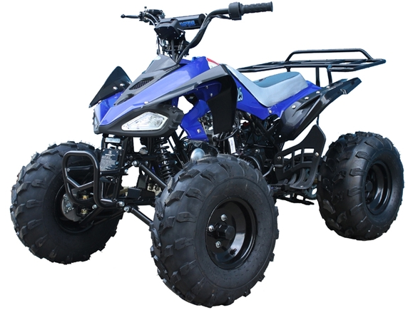 Cheetah ATV, TaoTao