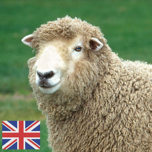 british wool breeds for spinning and felting
