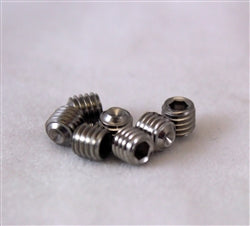 Stainless Steel Removable Locking Screws