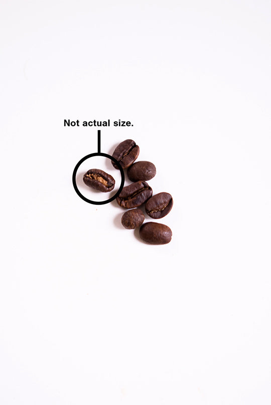 Nice Beans - roasted coffee