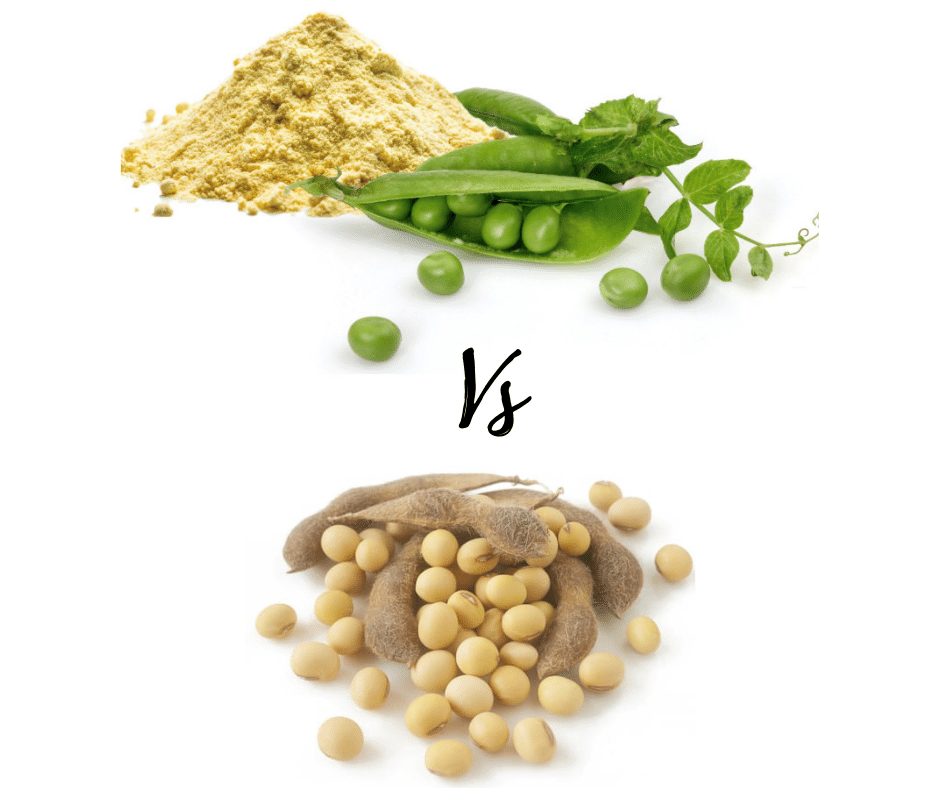 Soy Protein Powder or Pea Protein Powder: Which is better for you?