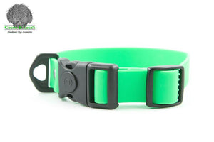 BioThane Webbing Dog Collar