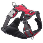Load image into Gallery viewer, Red Dingo Padded Harness