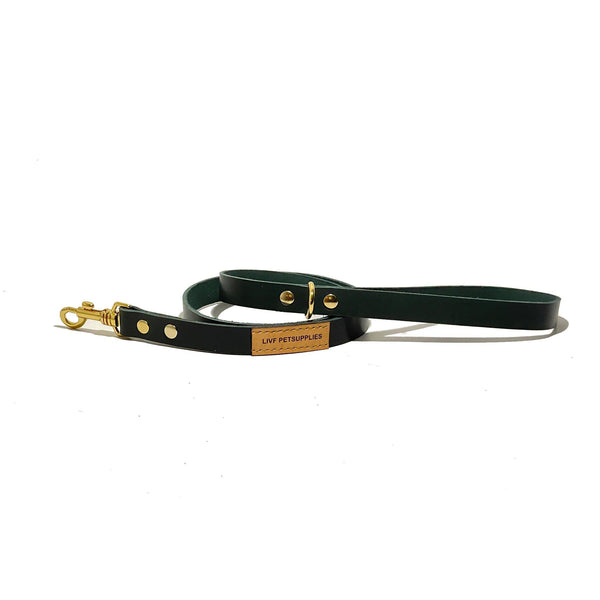 Basco City Leash - Hunter green-LIVF - Pet Supplies