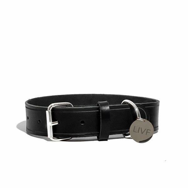 Basco Dog Collar - Black-LIVF - Pet Supplies