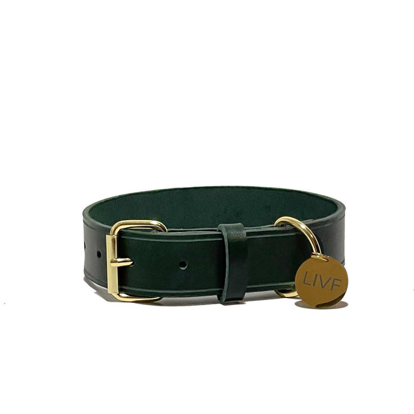 Basco Dog Collar - Hunter green-LIVF - Pet Supplies