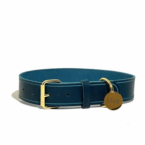 Basco Dog Collar - Petrol-LIVF - Pet Supplies