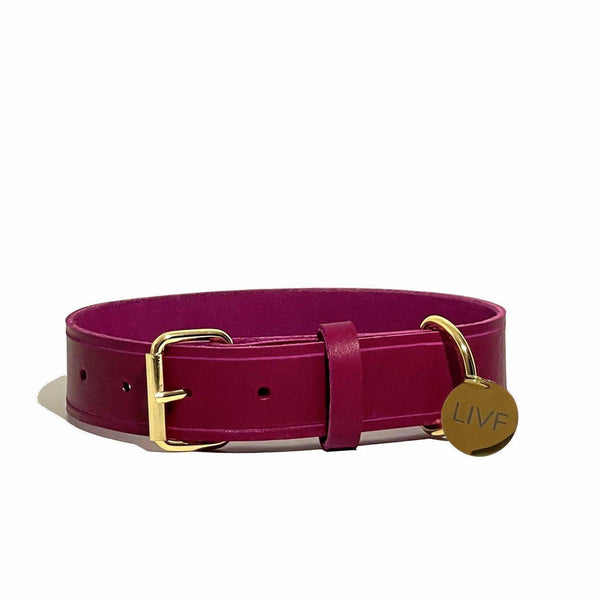Basco Dog Collar - Plum-LIVF - Pet Supplies