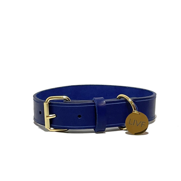Basco Dog Collar - Royal Blue-LIVF - Pet Supplies