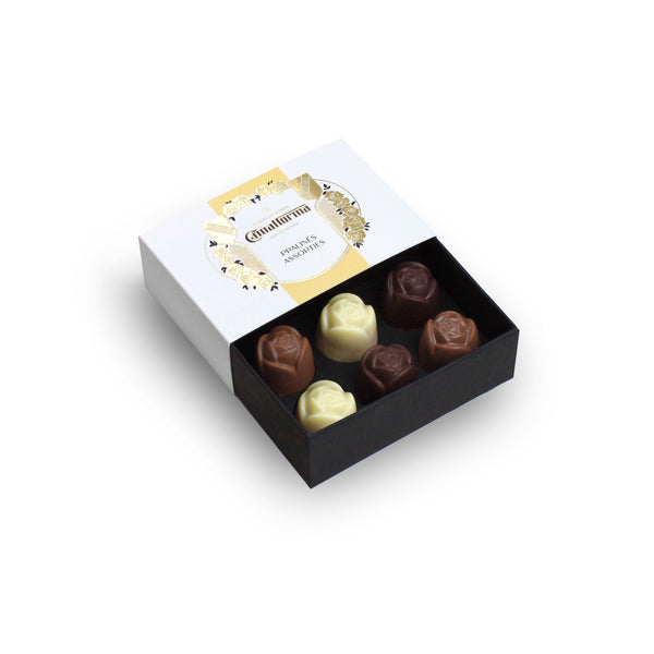 Box of Assorted Organic Swiss Chocolate Pralinés 6pcs - CimaNorma