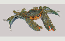 Load image into Gallery viewer, Mud Crab