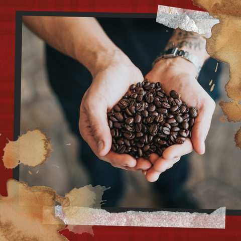Man hold coffee beans in cupped hands