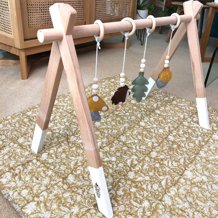 Nordic Wooden Playgym : White