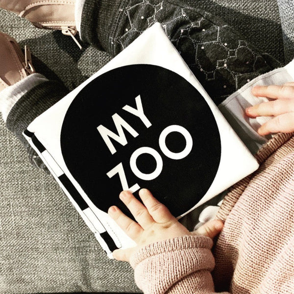 Cloth Book: My Zoo Toys RMS Publishing