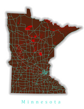 Load image into Gallery viewer, Minnesota State Map Print