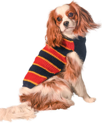 Chilly Dog Premium Wool Sweaters,  Collegiate Collection