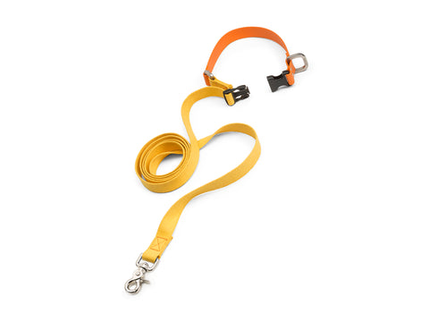West Paw Jaunts Leash