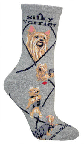 Wheel House Designs Socks, Silky Terrier, Socks