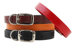 Auburn Leathercrafters Town Leather Dog Collar, Leashes and Collars
