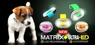 Max & Molly Ultra Matrix LED Waterproof Dog Collar Light